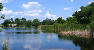 casselberry-homes-for-sale